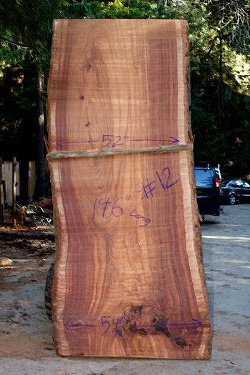 redwood12-350