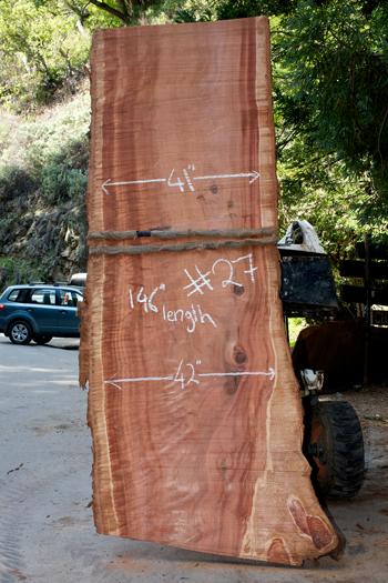 redwood27350